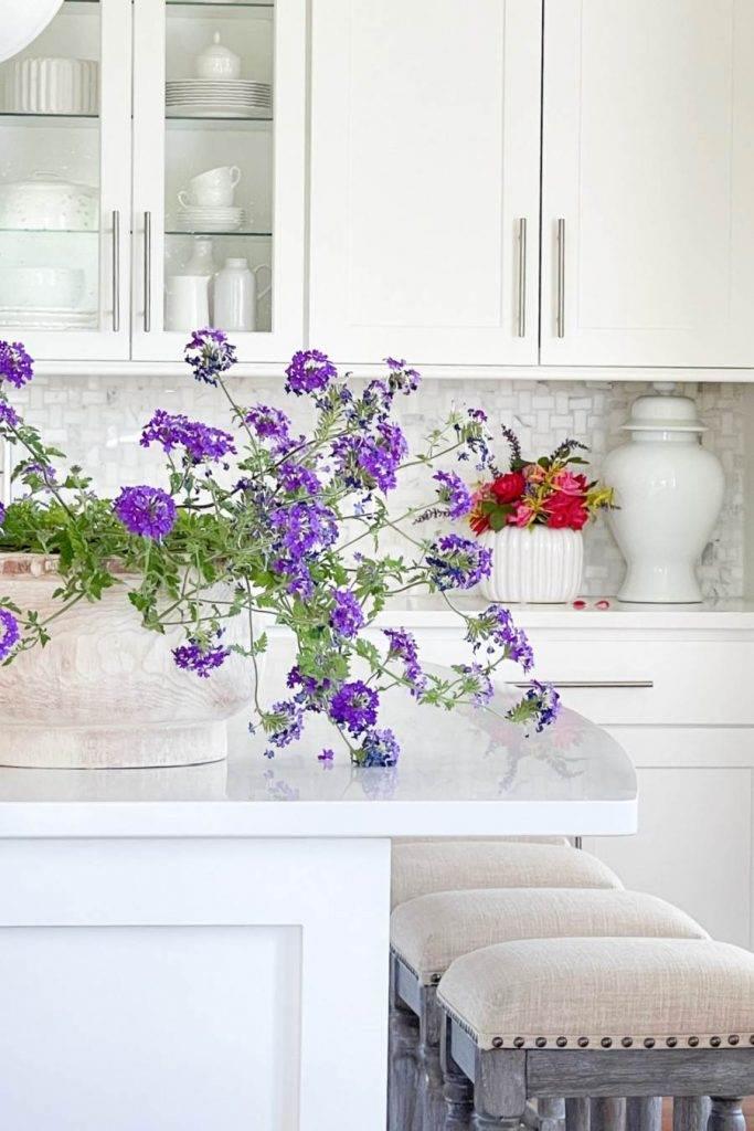 PURPLE PLANT IN KITCHEN