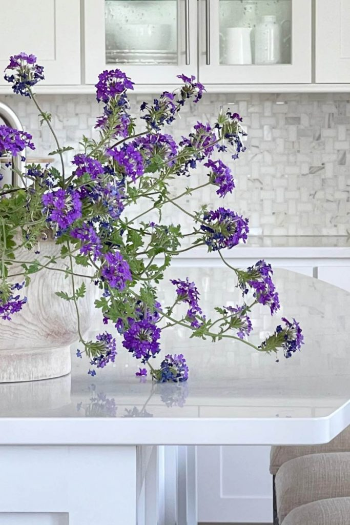 BIG CONTAINER OF PURPLE FLOWERS