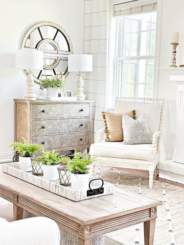 ACCENT DECORATIONS EVERY HOME NEEDS