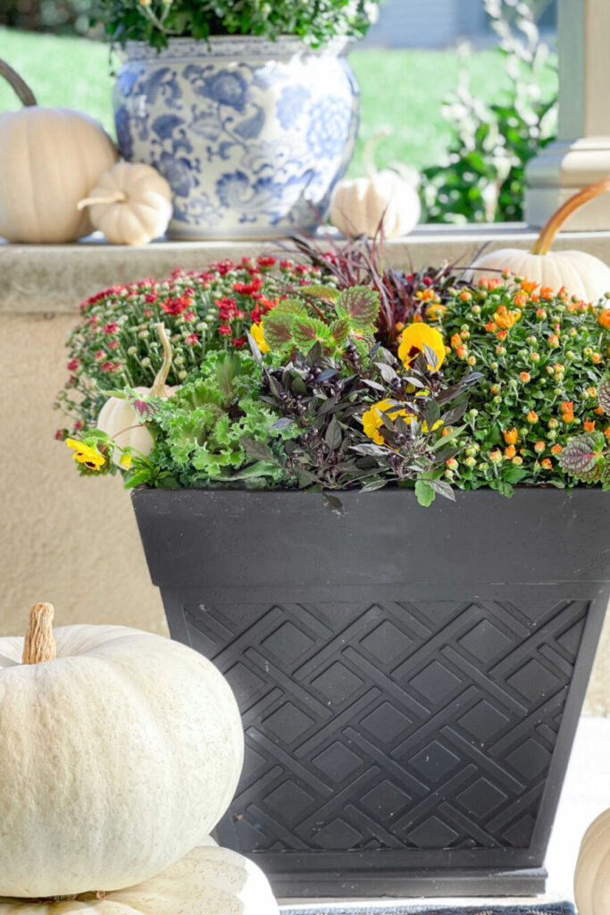 FALL PLANTER ON THE PATIO