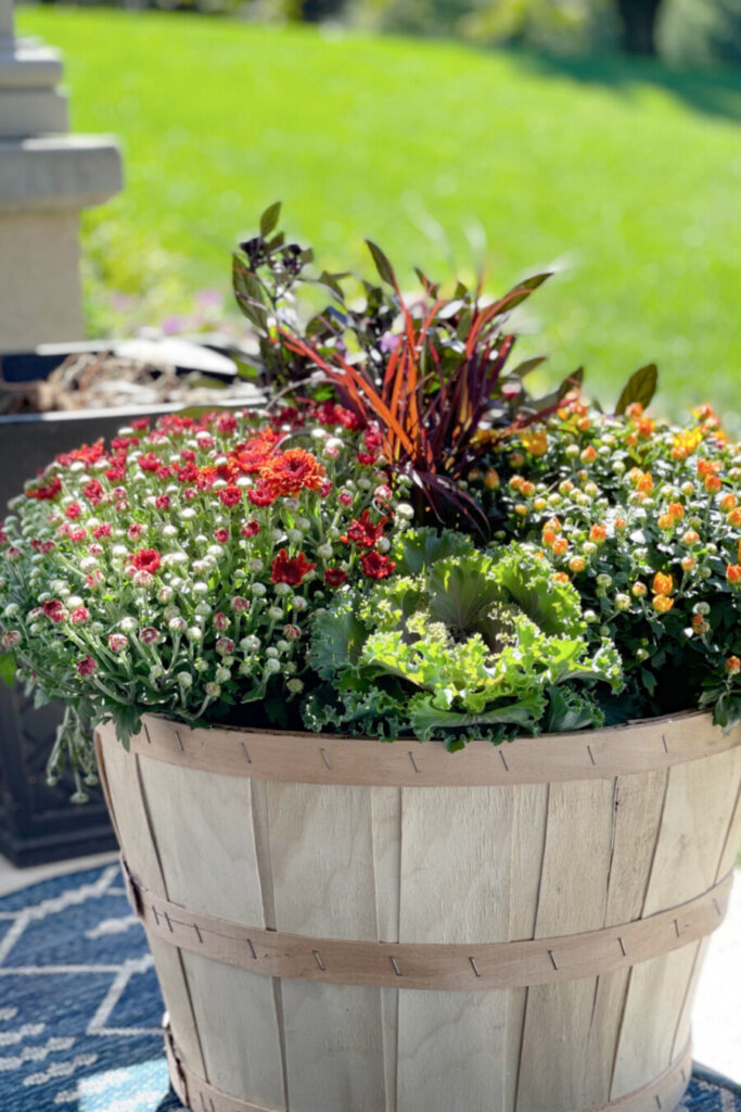 BASKETS OF PLANTED FALL PLANTS