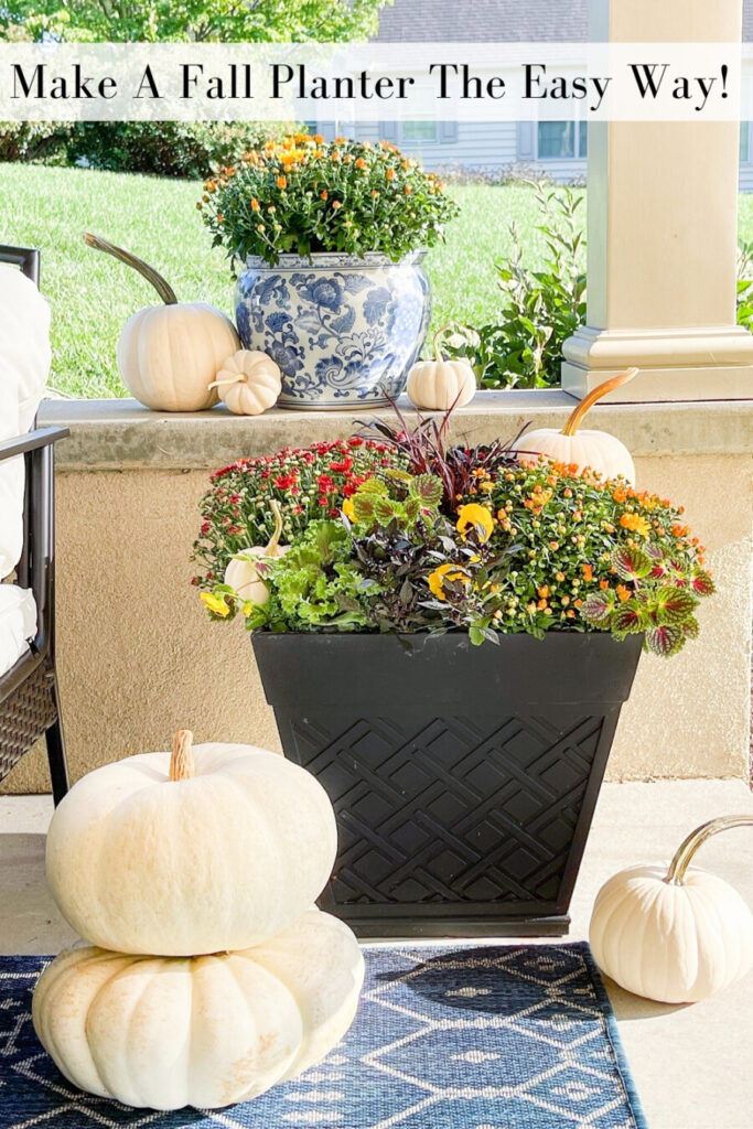 Plant a FALL PLANTER  that looks like a floral designer planted it for you! But it is so much less expensive! I