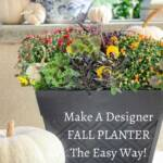 PIN FOR FALL PLANTER