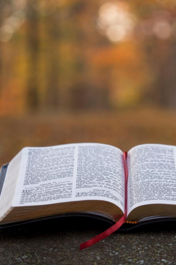 BIBLE OPENED